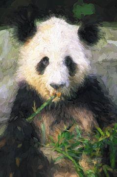 Panda Beer von Patrick Hoenderkamp