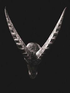 Capricorn auf schwarzem Hintergrund von John van den Heuvel