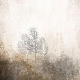 3 TREES IN WINTER HUG van Pia Schneider