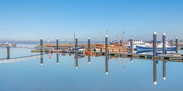 De haven van Lauwersoog als een spiegel op een windstille winterdag sur