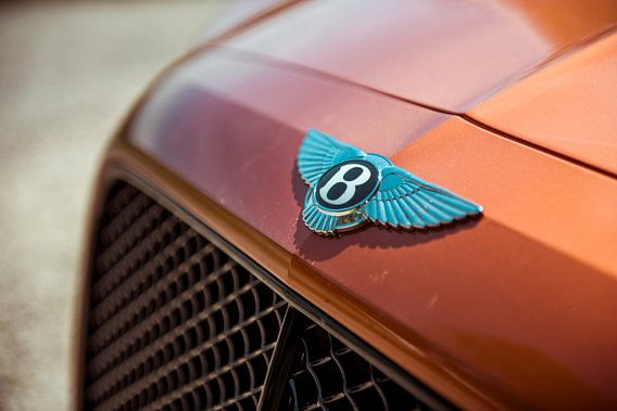 Bentley Mulsanne W12 S van Sytse Dijkstra