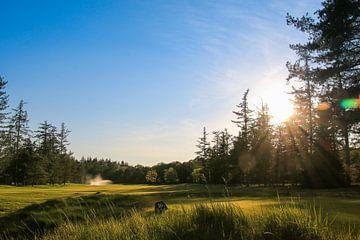 De Hoge Kleij Golf hole 16 van Peter van Weel