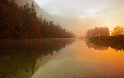 Vroeg in de ochtend op het meer