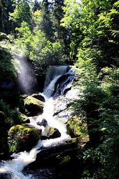 Cascade de Triberg 1 sur Paul Emons