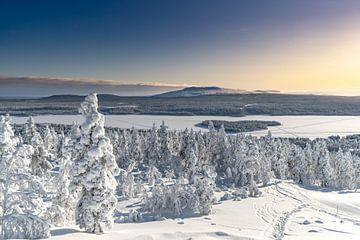 Zonsondergang in Lapland van Laurens Kleine