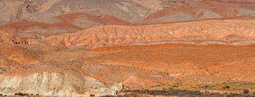 Landschaft Utah, USA von Richard van der Woude