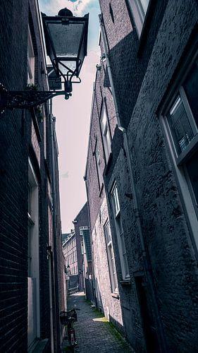 Palmstraat, Den Bosch van Jacq Christiaan