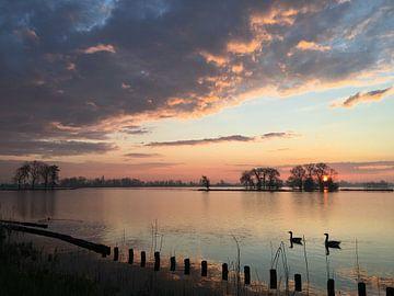 Zonsopkomst Reeuwijkse Plassen van Patrick Middelkoop