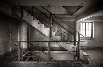 Usine d'escaliers sur Olivier Van Cauwelaert