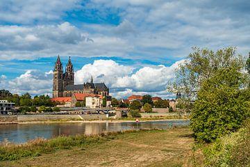 Blick über die Elbe auf den Magdeburger Dom sur Rico Ködder