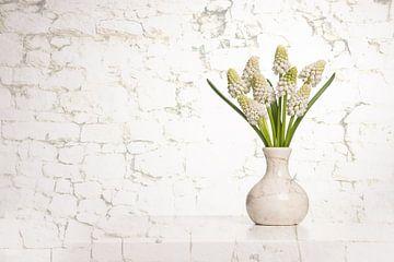 Witte druifjes van Elles Rijsdijk