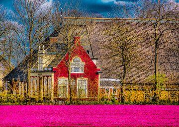 De Westhoek in Friesland van Harrie Muis
