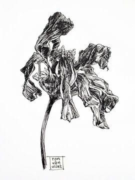Tote Blumen 3 von Ron van Vliet