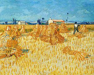 Vincent van Gogh. Oogst in de Provence