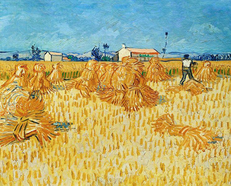 Vincent van Gogh. Oogst in de Provence van 1000 Schilderijen