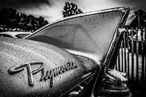 Plymouth vleugel na regen van