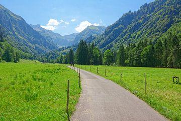 Wandern im Trettachtal von Gisela Scheffbuch
