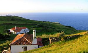 Wakker worden op de Azoren van Judith van Bilsen