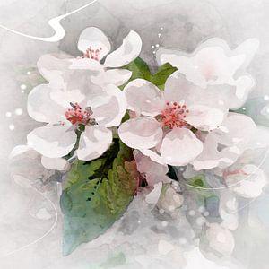 witte bloei