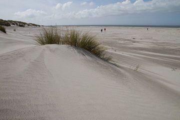 Duinvorming op het strand von