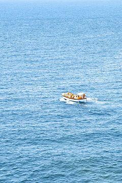 Boot op zee van Robert Styppa