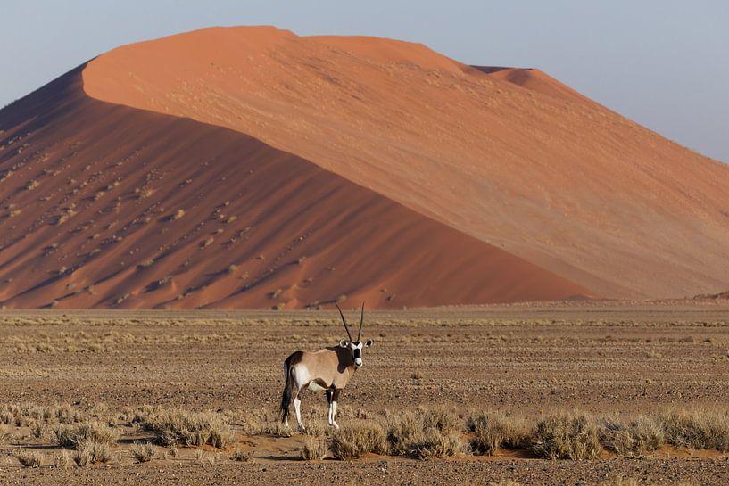 Oryx - Sossusvlei - Namibië van Eddy Kuipers