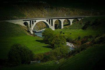Spoorbrug Zwitserland met koeien, weiland en rivier. van Gideon Onwezen