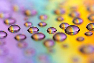 Water druppels in regenboog kleuren van Lisette Rijkers