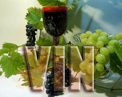 Rode wijn met druiven van Wieland Teixeira