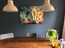 Kundenfoto: Pusteblume Tautropfen  von Julia Delgado, auf alu-dibond