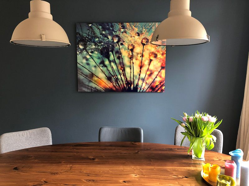Kundenfoto: Pusteblume Tautropfen  von Julia Delgado, auf acrylglas