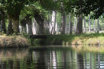 Le Marais  Poitevin von Margriet Adema