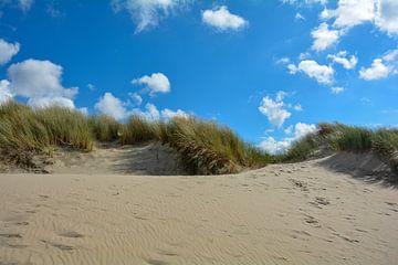 Noordzee - Duinen van Claudia Evans