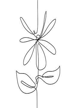 Lijntekening abstracte bloem zwarte lijn op witte achtergrond - in de vorm van een madelief van Emiel de Lange