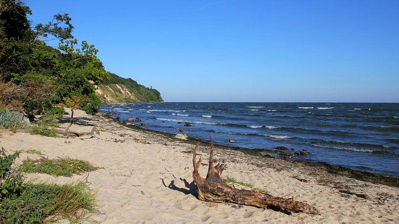 Am Südstrand von Ostsee Bilder