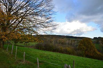 Herfstlandschap in de Ardennen von Kim V