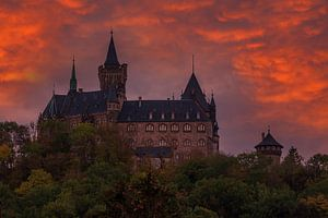 Schloss Wernigerode von Torsten Krüger