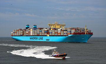 Maersk MC-Kinney Moller von Martin Van der Pluym