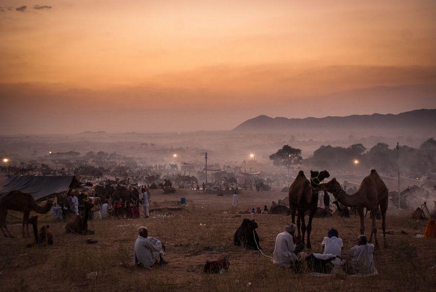 Pushkar Camel Fair van Davied Meerstra