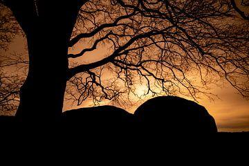Hunebed D21 bij Zonsondergang