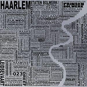 Kaart van Haarlem  van Districto Prints