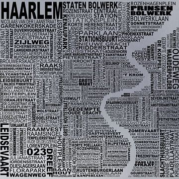 Kaart van Haarlem  van Stef Van Campen