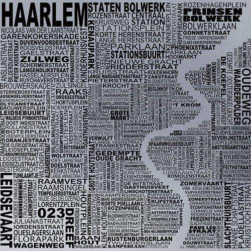 Kaart van Haarlem  van