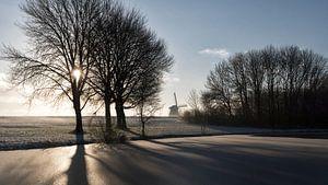 Winterochtend 2