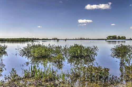 Waterrijk Tiengemeten van Frans Blok