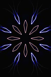 luminous Flower N.3