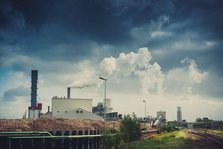 Suikerunie in vol bedrijf van Jan Peter Mulder