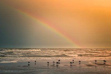 Regenboog aan het strand