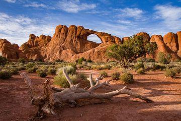 Arches Nationalpark von Marc Vandijck