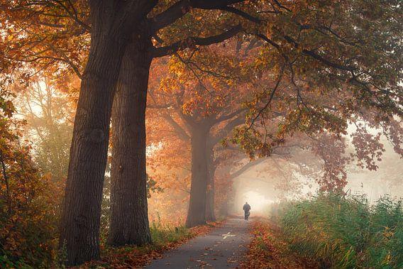 Herfst langs het Apeldoorns Kanaal van Edwin Mooijaart